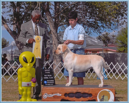 Yellow Lab, Fresca, group third win